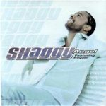Shaggy (ft. Rayvon) – Angel