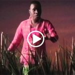 VIDEO: Angélique Kidjo – We Are One
