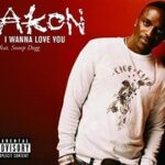 Akon (ft. Snoop Dogg) – I Wanna Love[Fuck] You + Remix