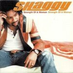 Shaggy – Strength of a Woman